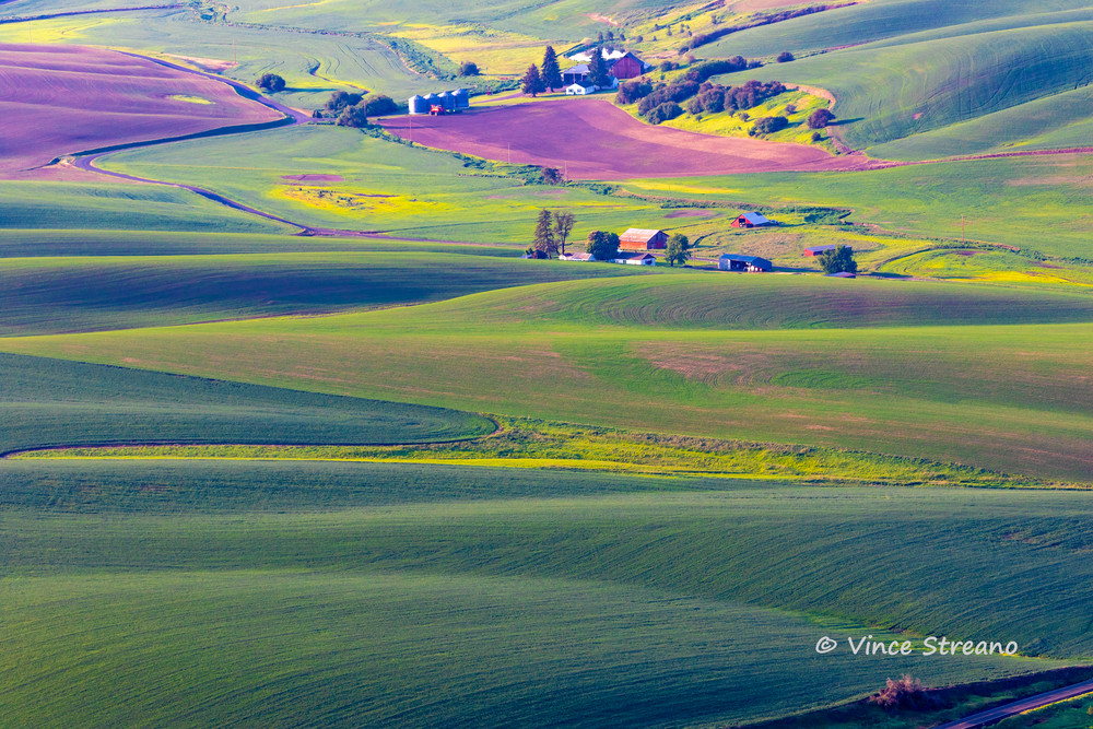 Rolling hills of the Palouse Washington farmlands