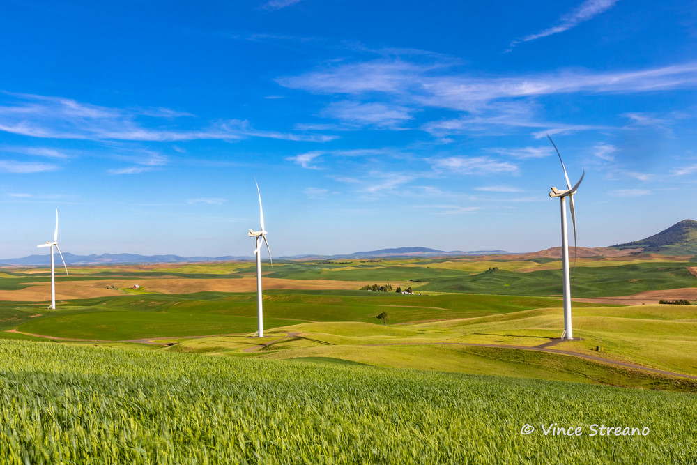 Palouse wheat fields share the landscape with wind towers