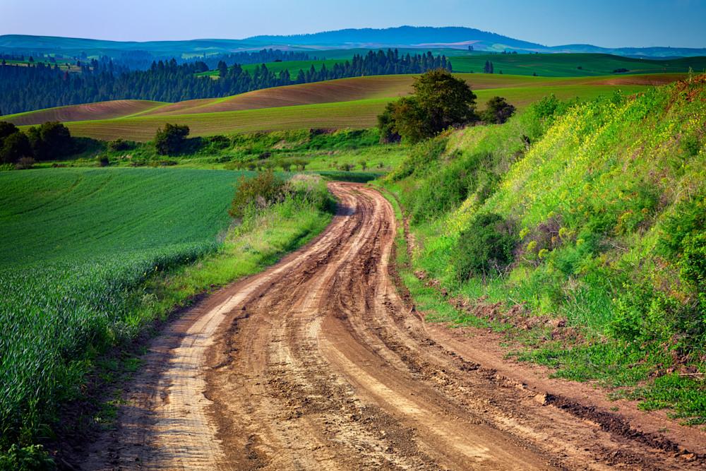 The Farm Road by Rick Berk