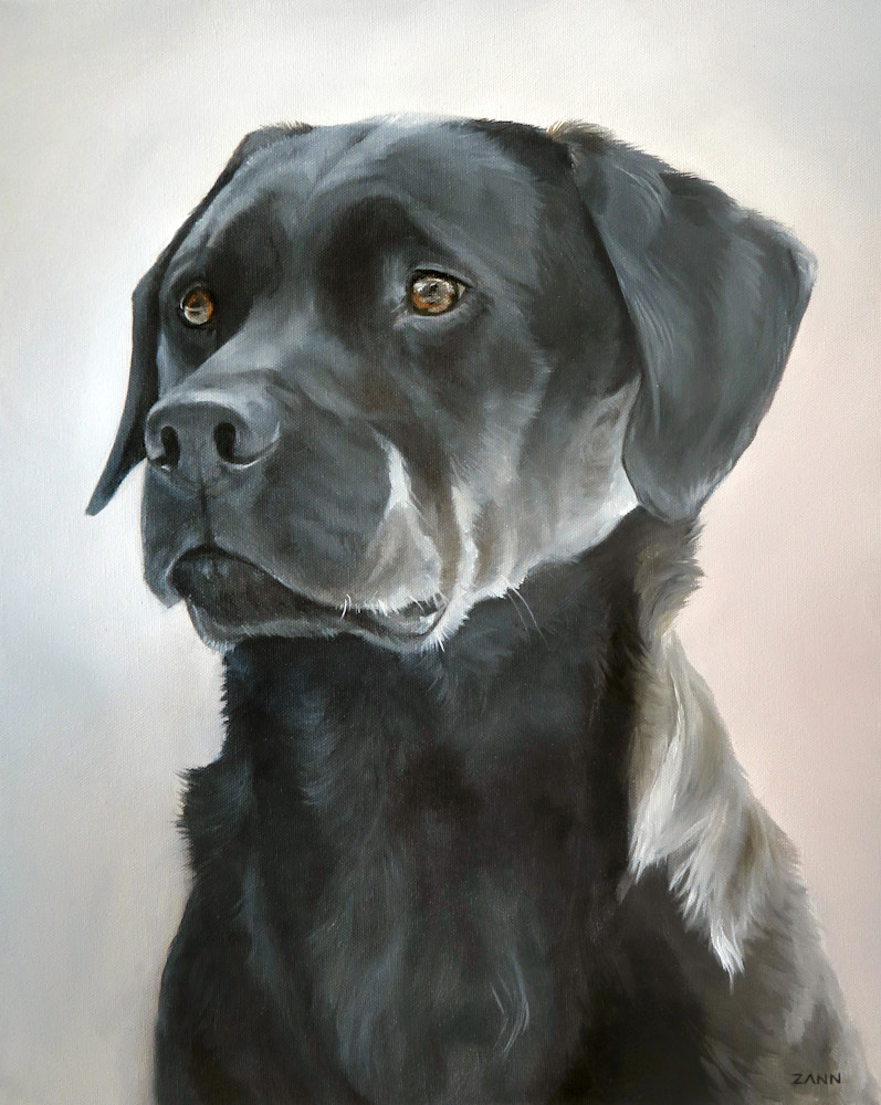 Print of a Black Labrador Retriever Dog, Portrait Painted in Oil