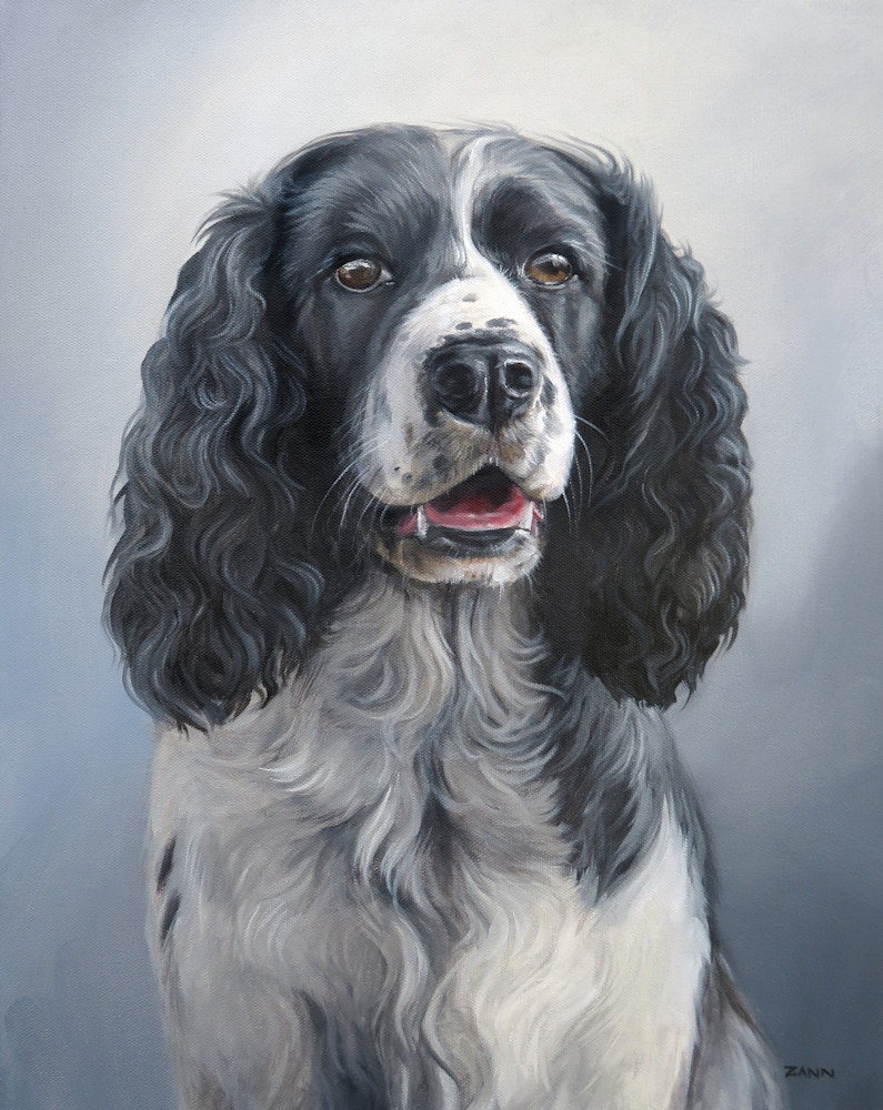 Print of a Springer Spaniel Portrait Painting in Oil