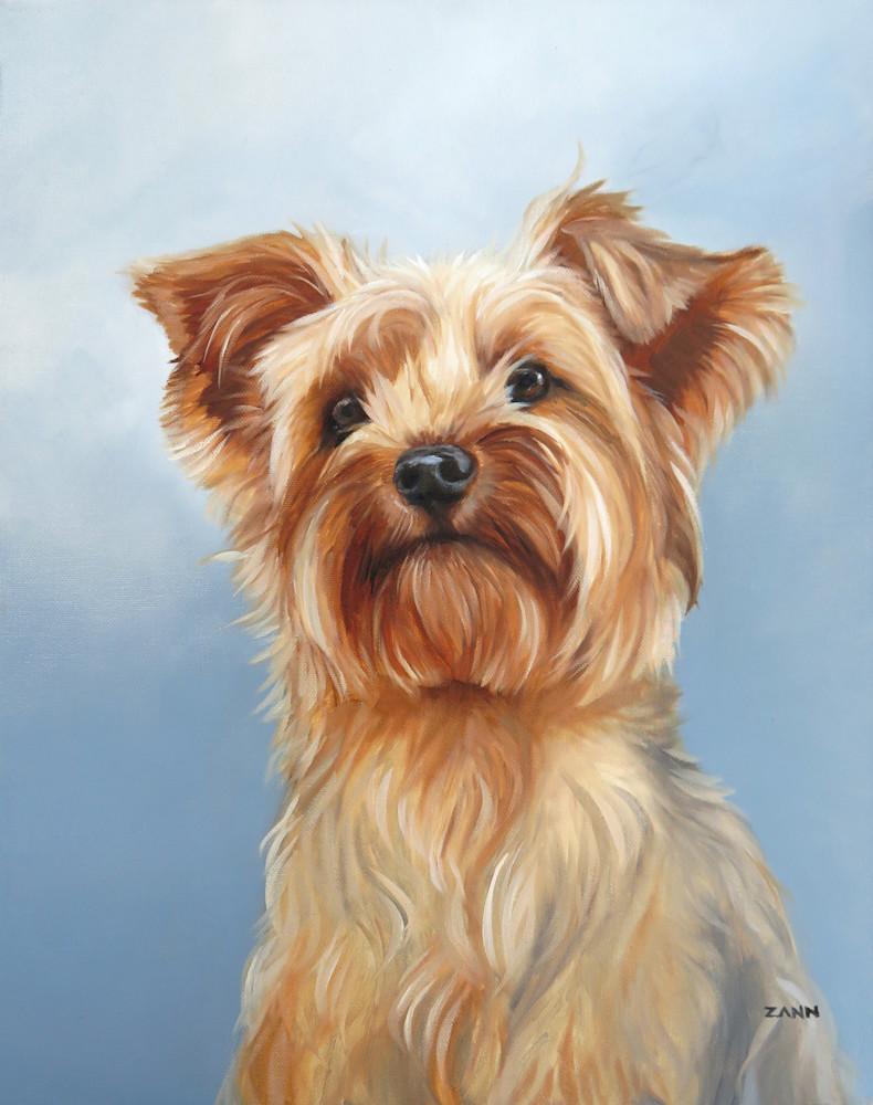 Yorkshire Terrier Portrait Print
