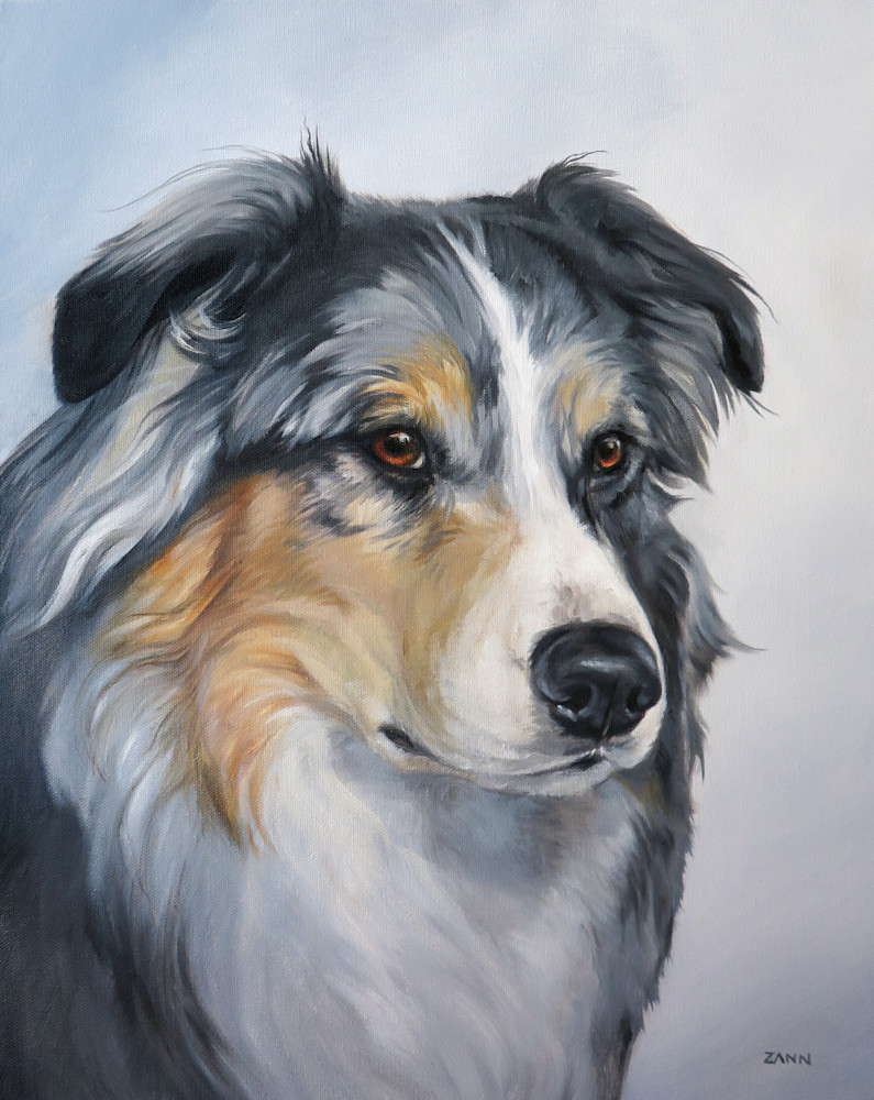 Print Portrait of an Australian Shepherd Painting in Oil