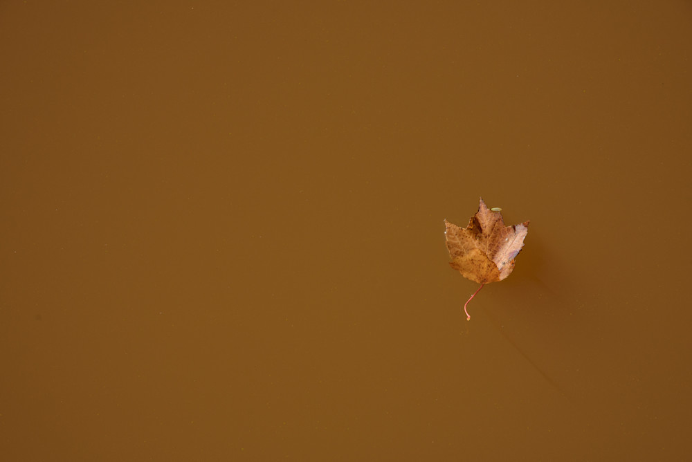 Floating Photography Art | Colin Hocking Photography