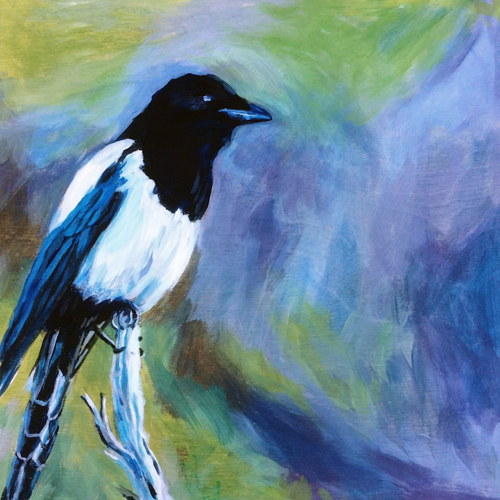 Mr. Magpie   Alaska Art Print Art | Amanda Faith Alaska Paintings / Estuary Arts, LLC