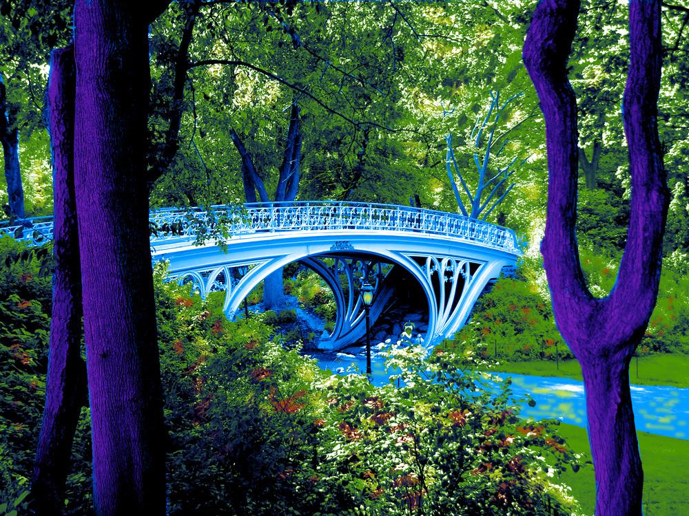 Bridge Central Park