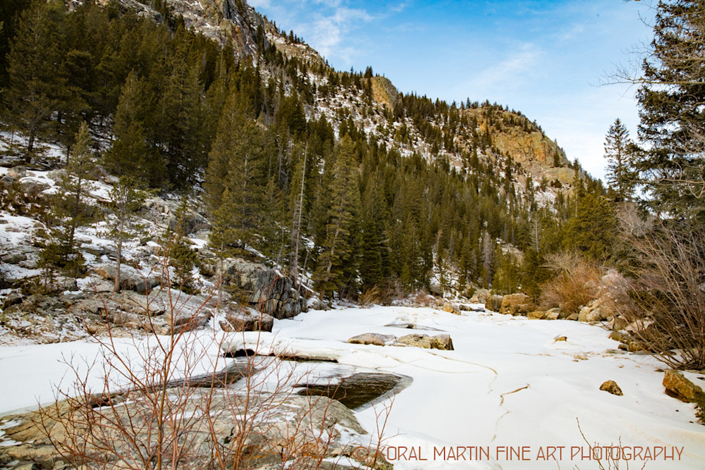 Cache La Poudre Canyon Scenic Drive Photograph 9405 | Colorado Photography | Koral Martin Fine Art Photography