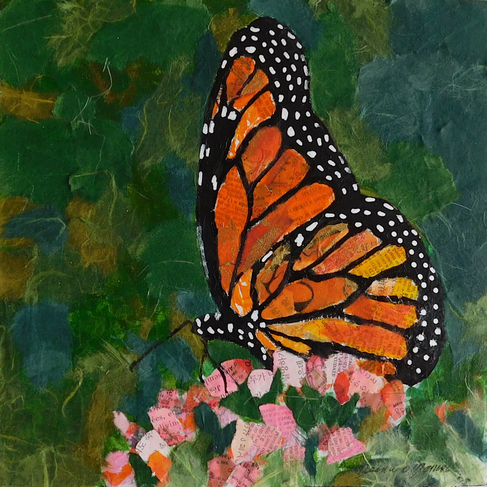 butterfly, butterflies, butterfly_art, Monarch
