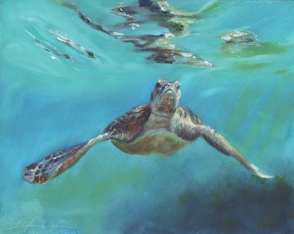 Sea Turtle Prints