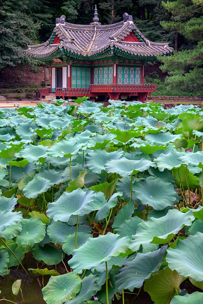 Huwon Secret Garden | Shop Photography by Rick Berk