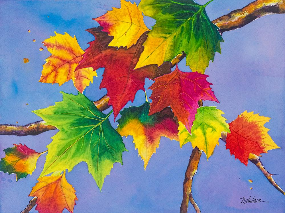 Maple Splendor  Art   Mickey La Fave
