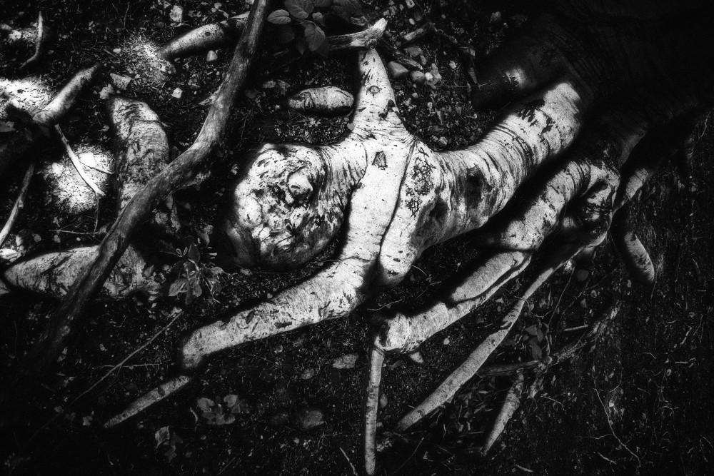 Hanged Man Art | Jeffrey Harrison Multi-Media Artist