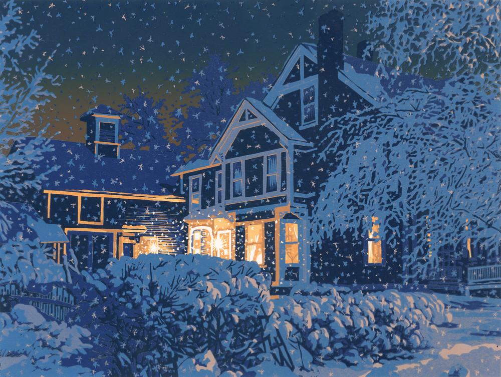 A house at night in snowfall