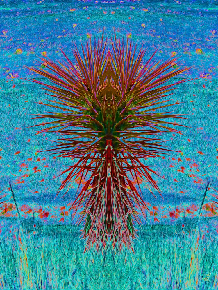 Yucca No. 1 Art | Maureen Wilks Digital Fine Art