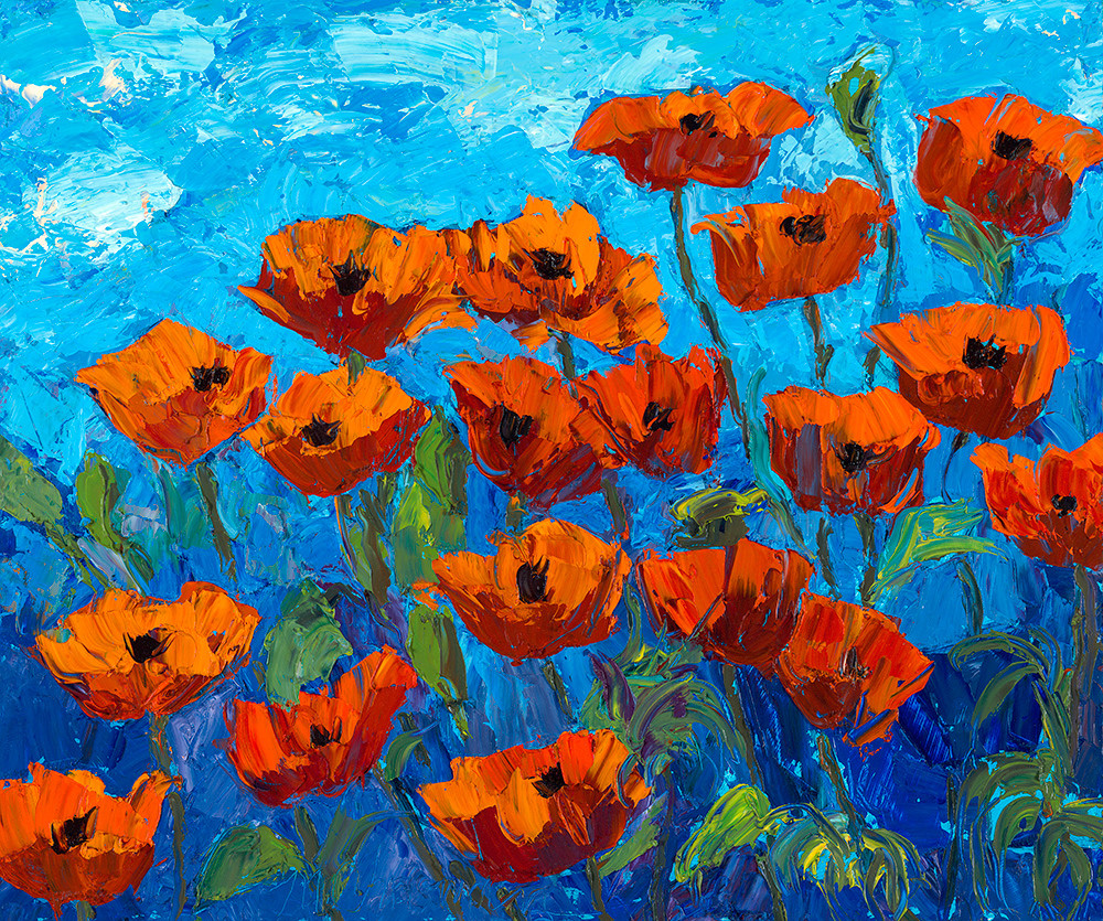 Summer Day Poppies Art | Fine Art New Mexico