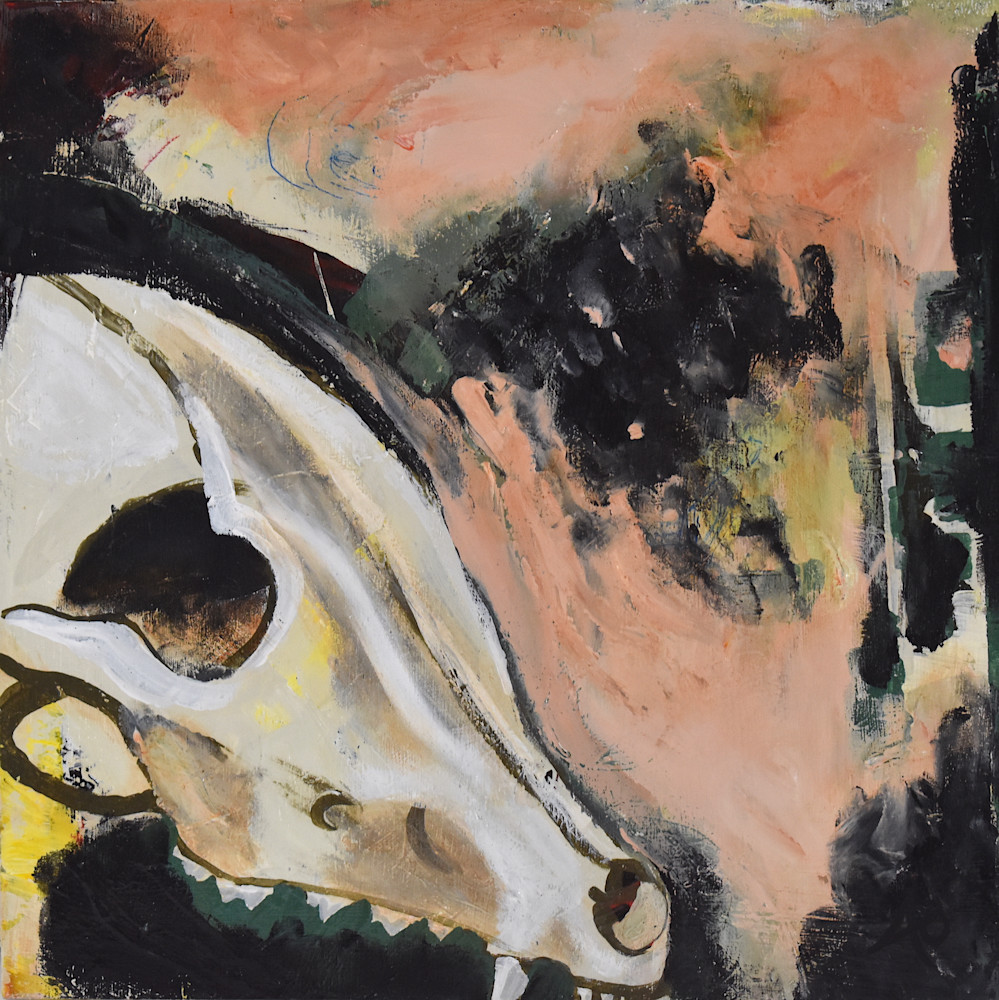 Coyote Skull 1 Art   Amy O'Hearn Art