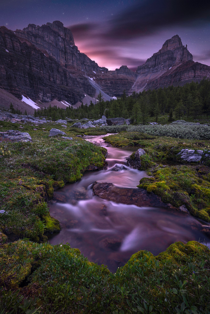 'Mossy Banks & Starlit Streams' Photograph by Jess Santos for sale as Fine Art