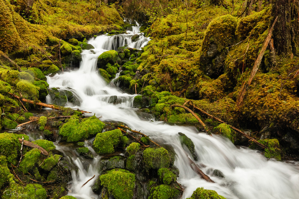 Cascade of water over boulders and moss from snow melt in spring from the Chugach Mountains bordering Eyak Lake  in Southcentral Alaska. Afternoon.