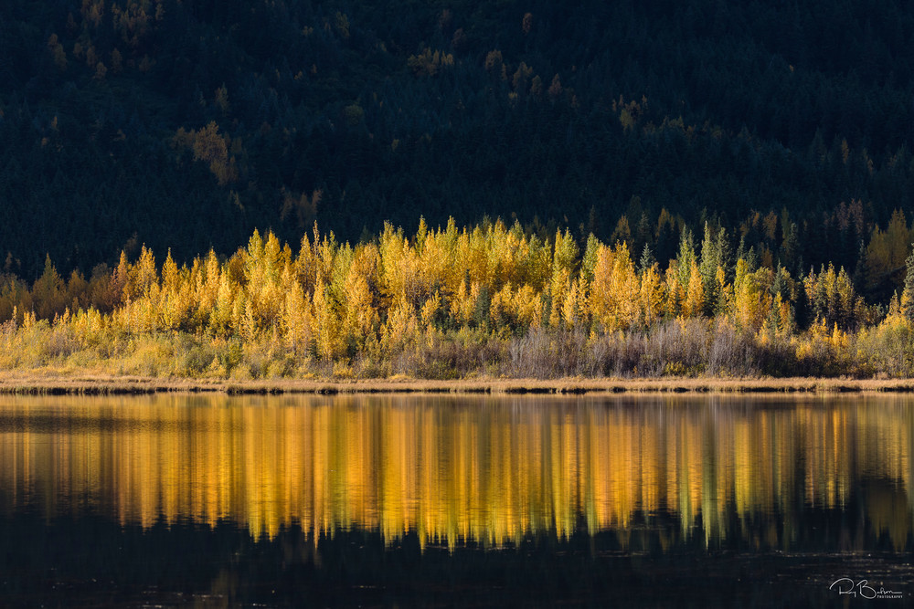 Autumn foliage reflected in Tern Lake in Southcentral Alaska. Morning.