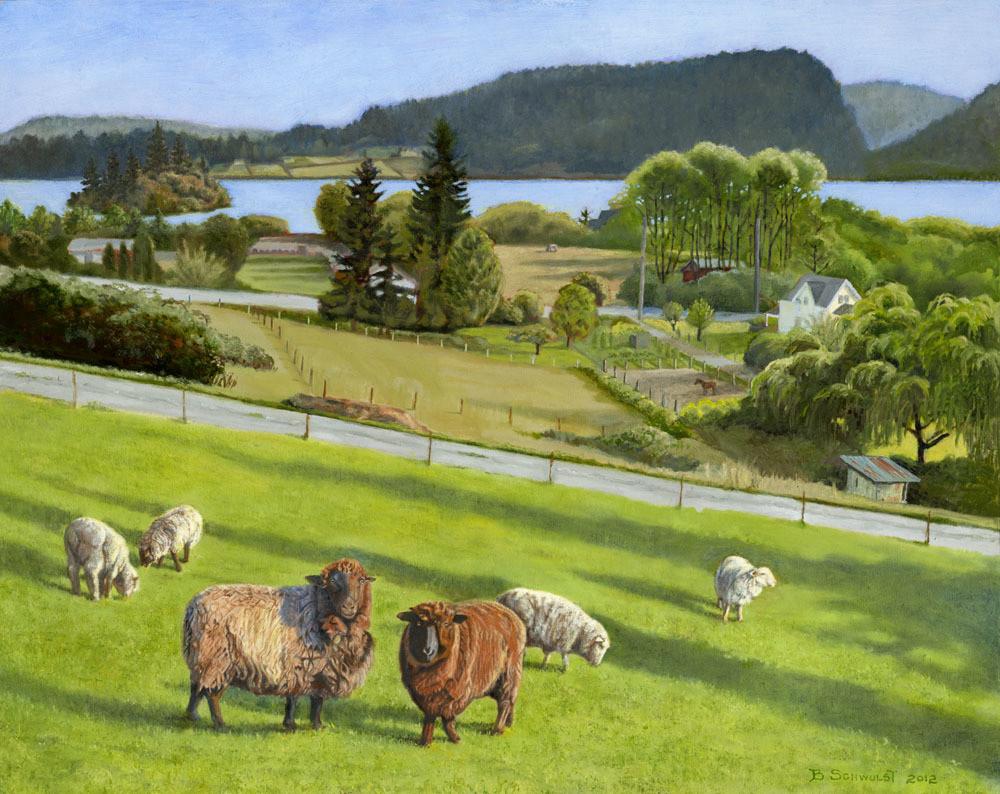 Barb Schwulst - Campbell Lake Sheep