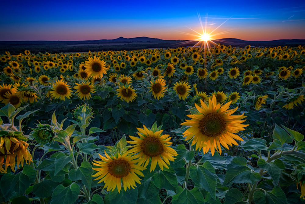 Sunset in Aroostook County | Shop Photography by Rick Berk