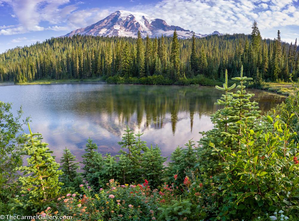 Reflection Lake Bloom Art | The Carmel Gallery