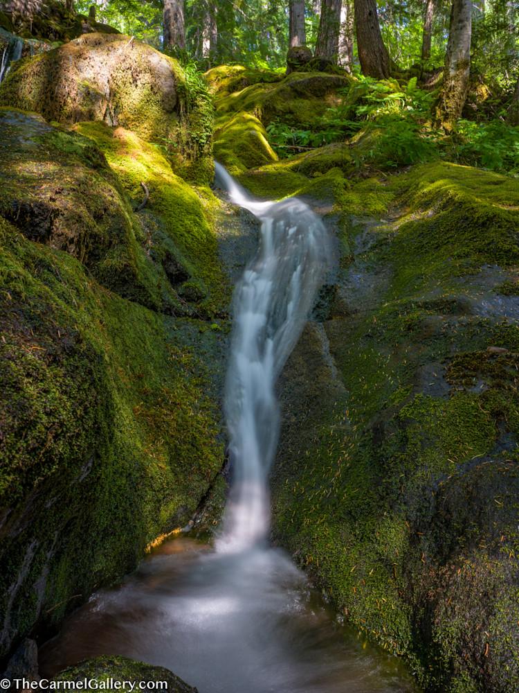Rainier Cascade Art | The Carmel Gallery