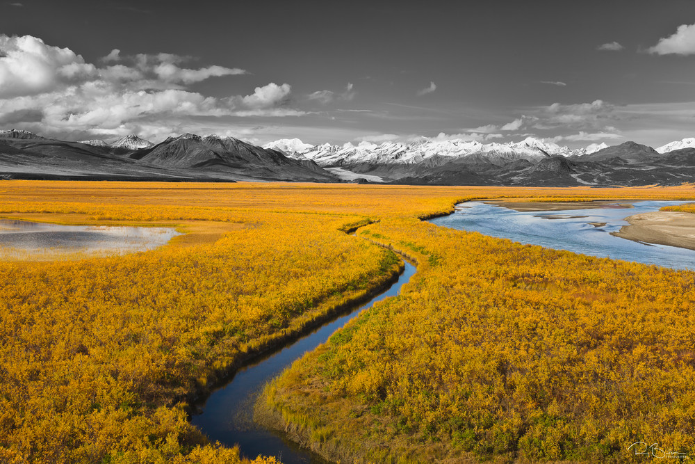 Maclaren Valley   Selective Color Photography Art | Ray Bulson Photography