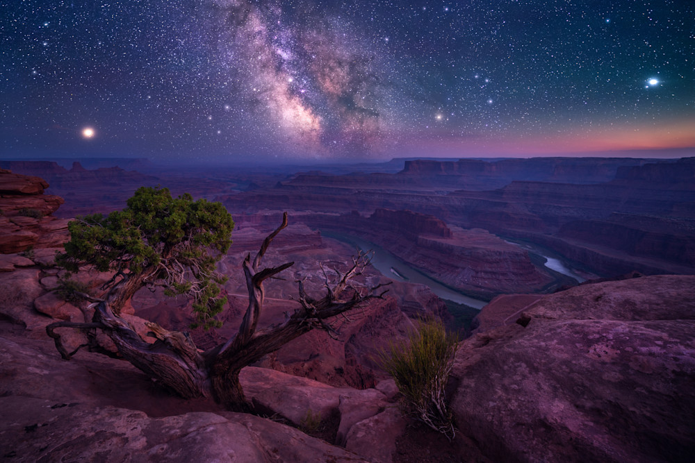 'Canyons & Stars' Photograph by Jess Santos for sale as Fine Art