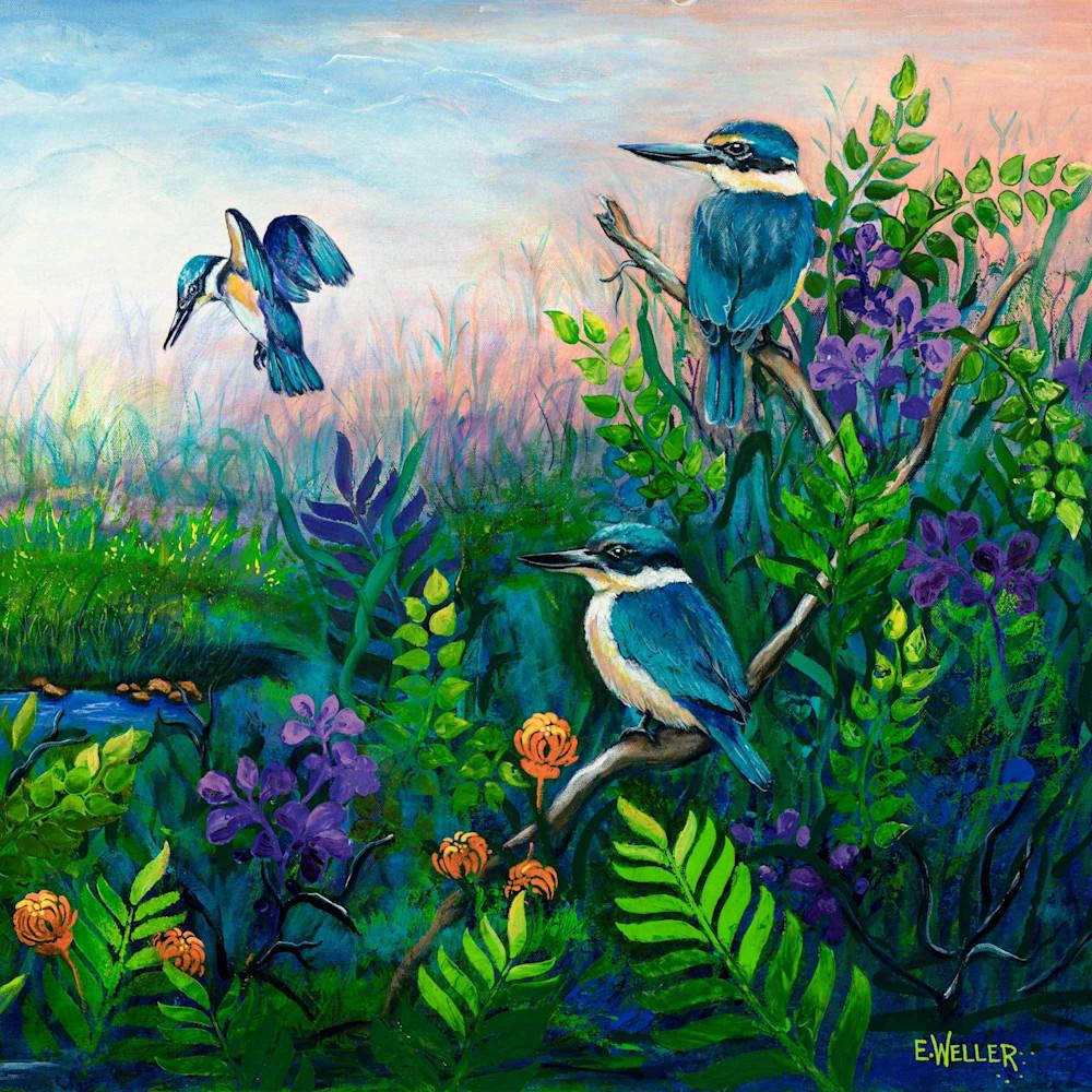 Kingfisher Habitat E