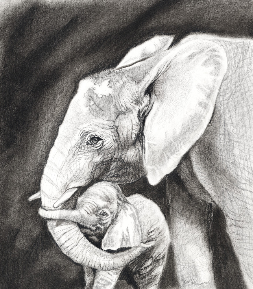 Elephantine Embrace Art | Kelsey Showalter Studios