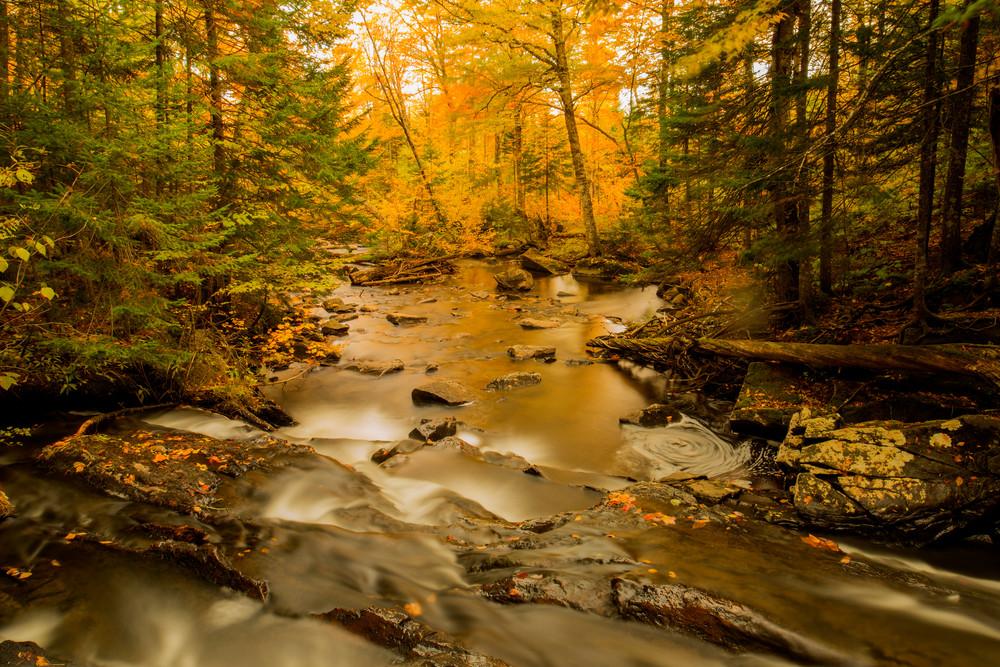 Jackman Creek Fall Photography Art | Craig Primas Photography