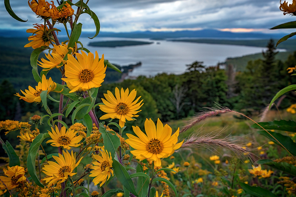 Summer Evening at Height of Land | Shop Photography by Rick Berk