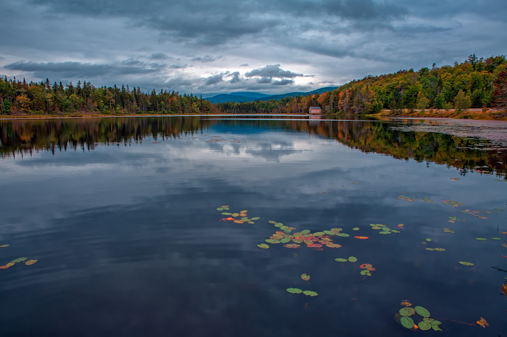 Beaver Pond | Shop Photography by Rick Berk