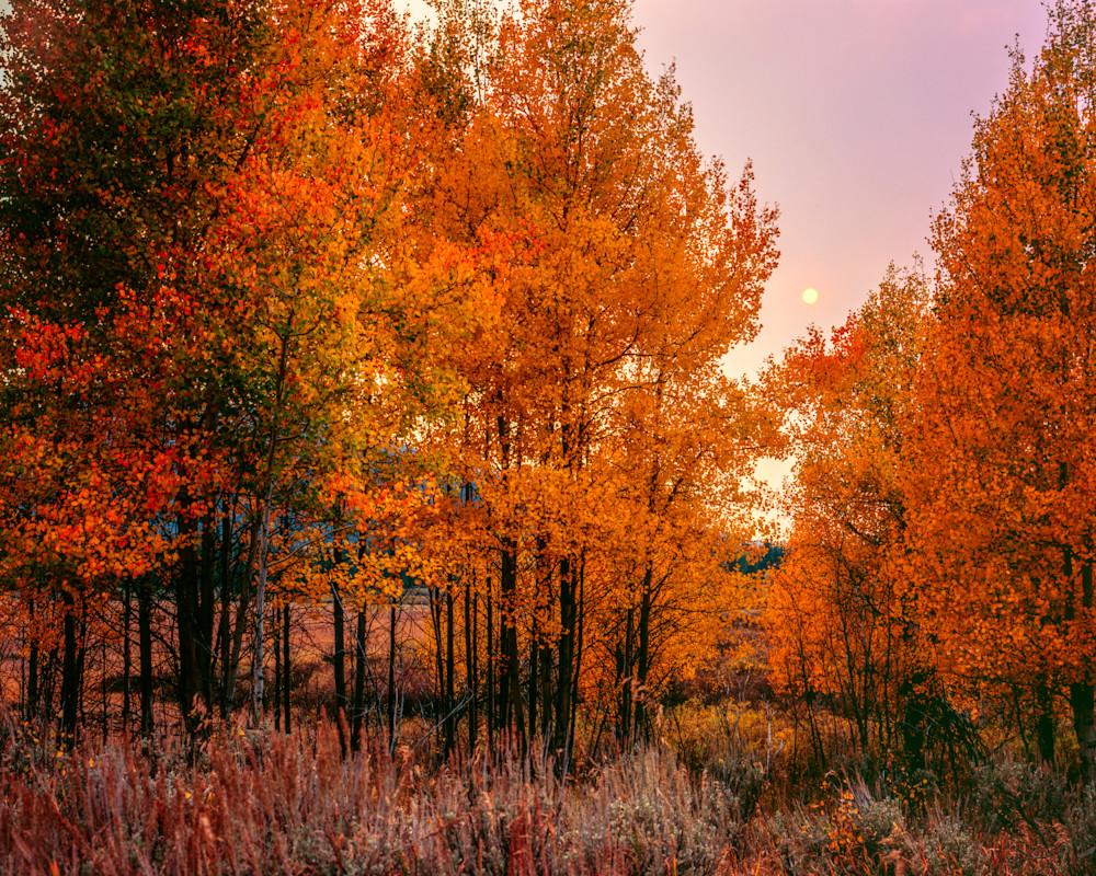 Smoke Glow Photography Art | Craig Primas Photography