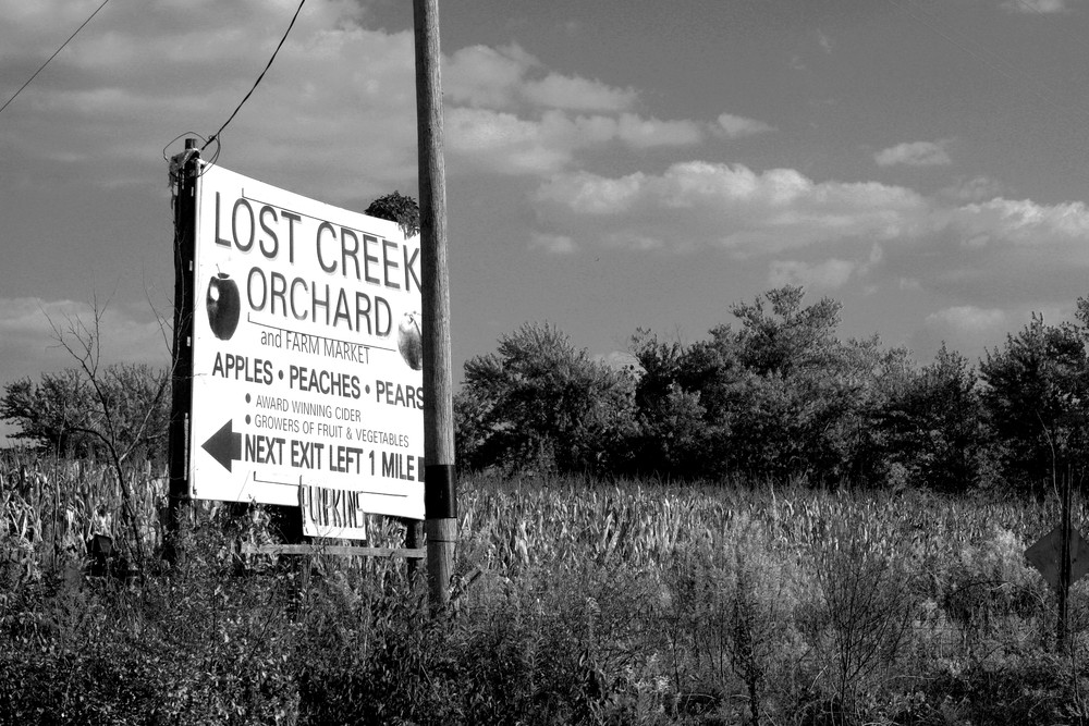 Lost Creek Orchard Photography Art | Peter Welch