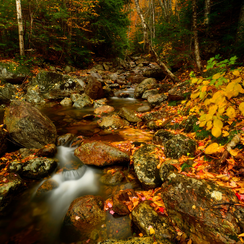 Fall Creek Photography Art | Craig Primas Photography