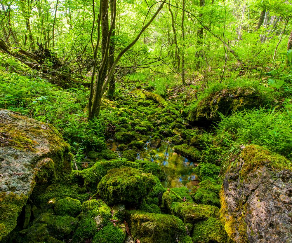 The Grotto Photography Art | Craig Primas Photography