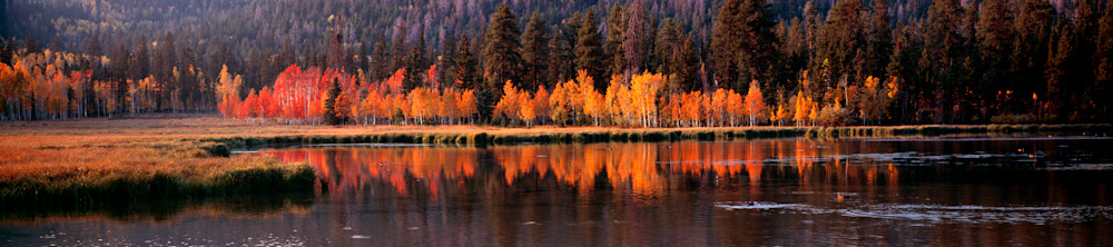 Duck Creek Pond Brilliance Photography Art | Craig Primas Photography