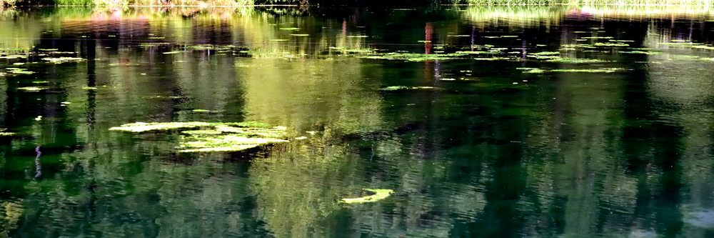 Reflections In Hatchery Pond