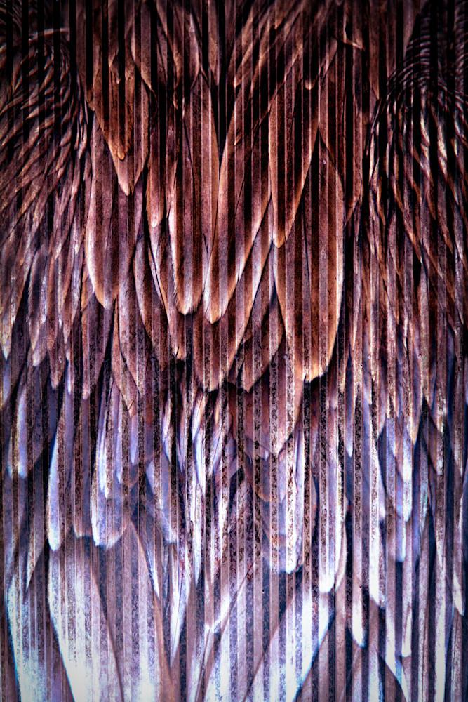 Birds Of A Feather Photography Art | Caplan Studios Vault, LLC
