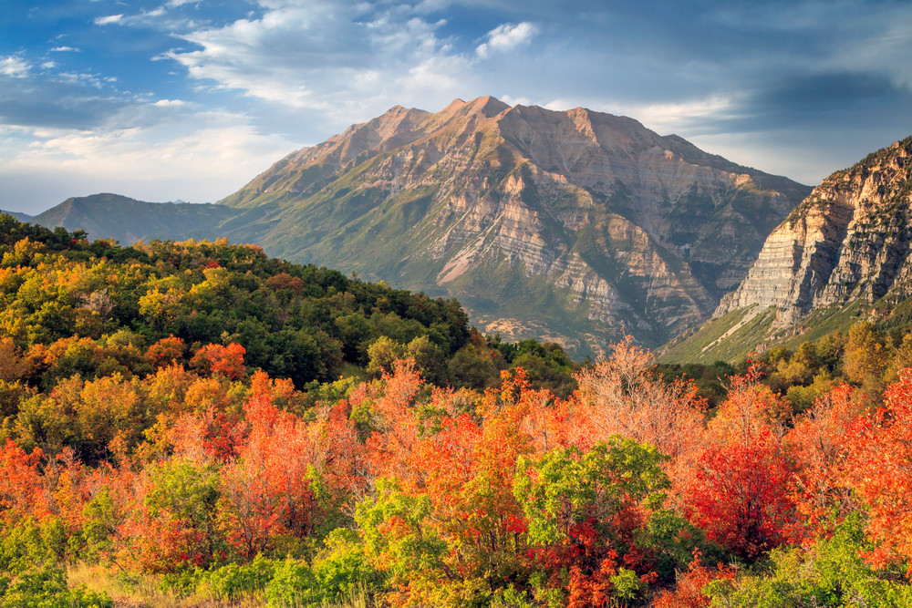 Timpanogos with Fall Color