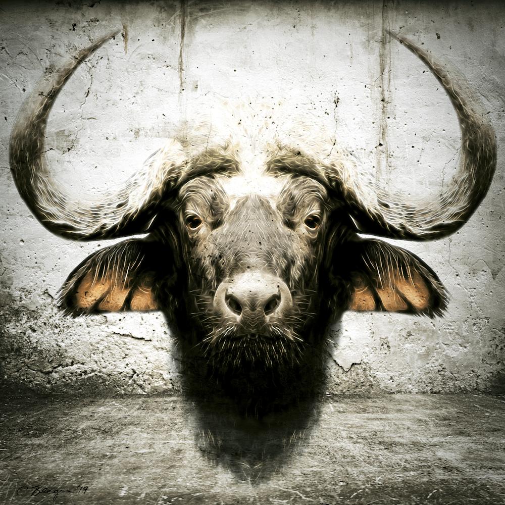 Bull No. 1, 2018 by artist Carolyn A. Beegan