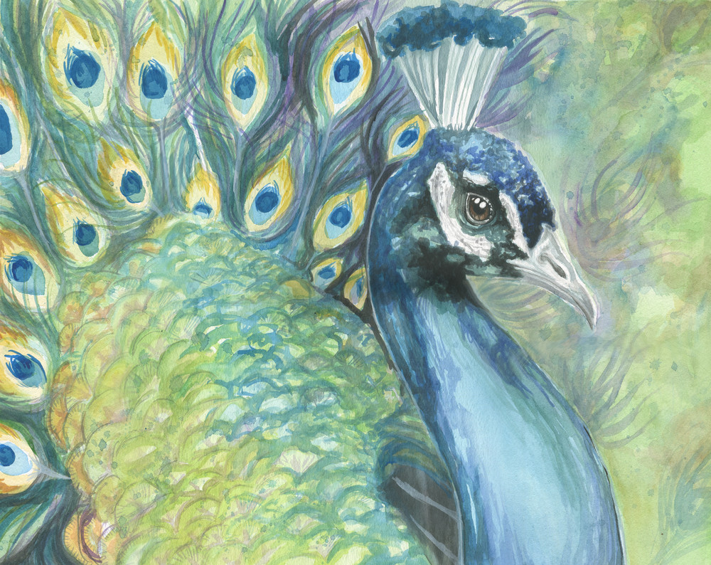 Green Watercolor Peacock