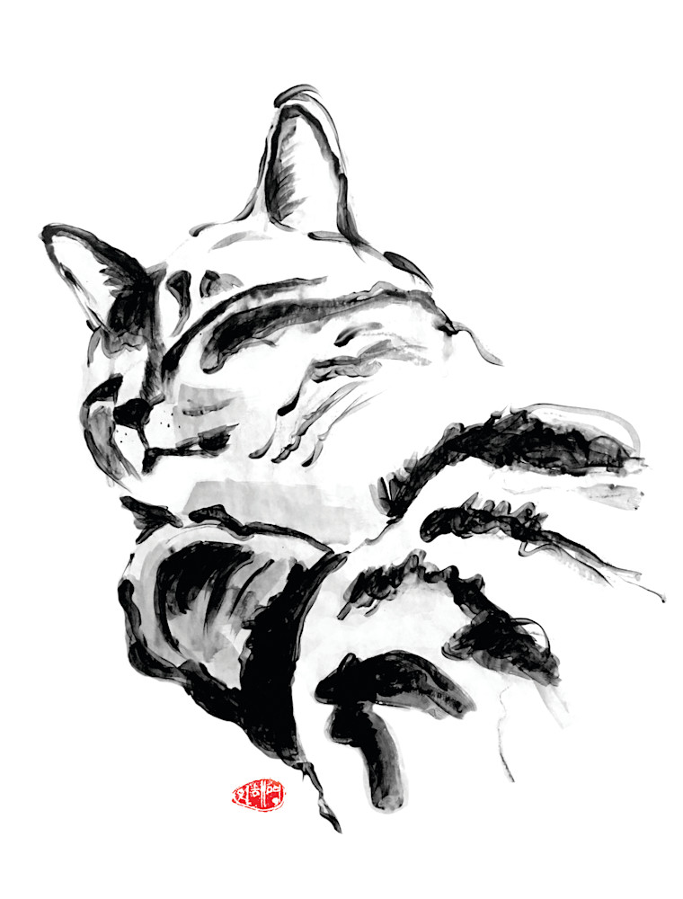 card, note card, cat card, black cat, animal lover cards, rescue cat, cat lover, domestic short hair tabby
