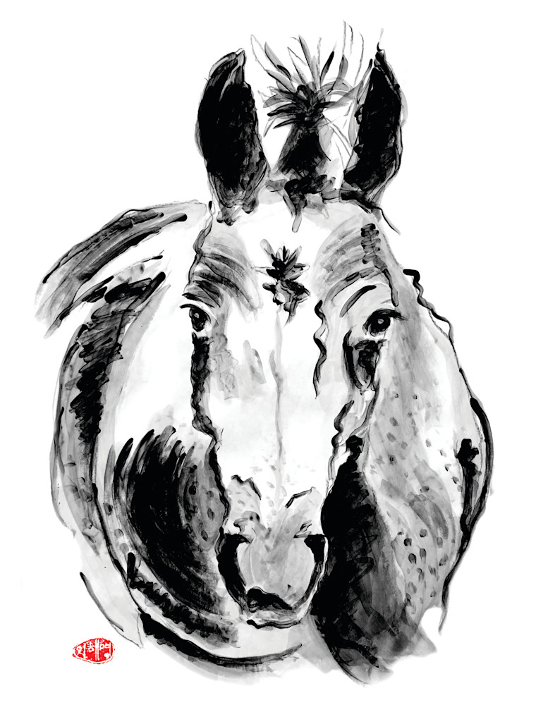 horses, Appaloosa X thoroughbred, thoroughbred