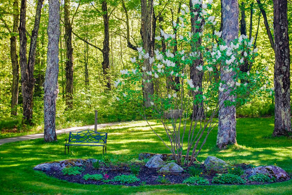 Maine Garden
