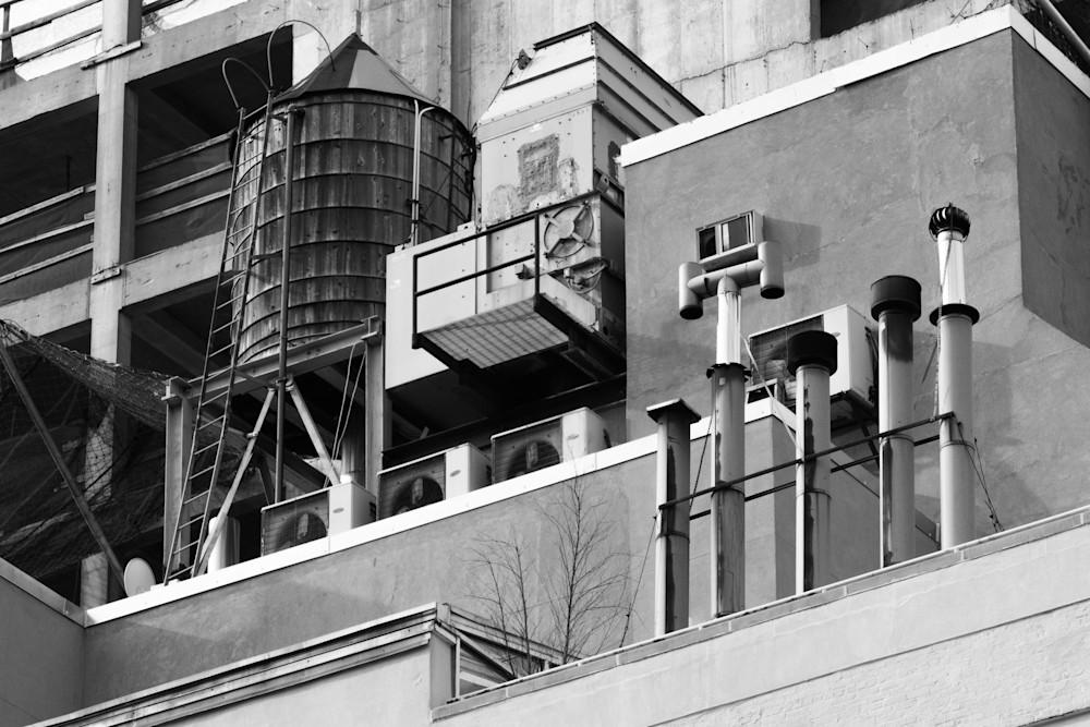 NYC 30 | David Wilkes | Roost Artist