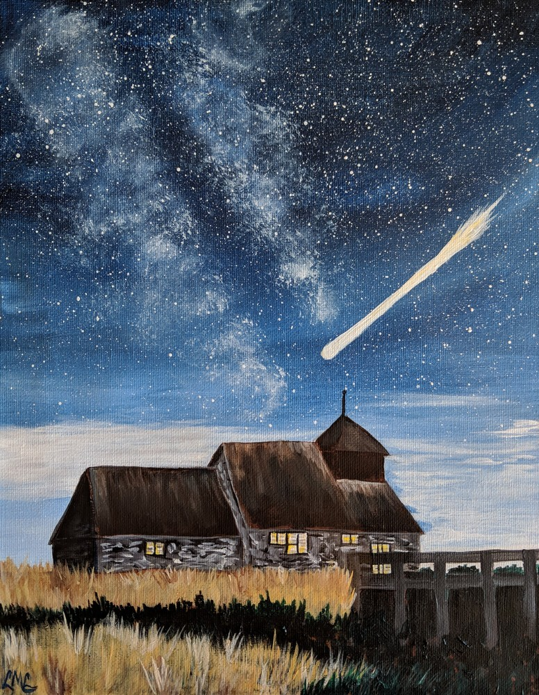 Perseids Meteor Showers | LML Studio Art