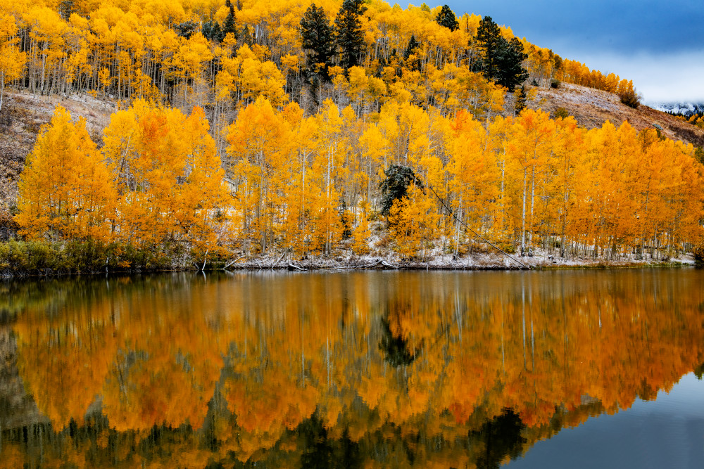 Pond Reflection Photography Art | Gale Ensign Photography